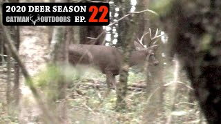 Buck didn't know I was there! Stillhunting New Ground - 2020 Deer Season Ep 22