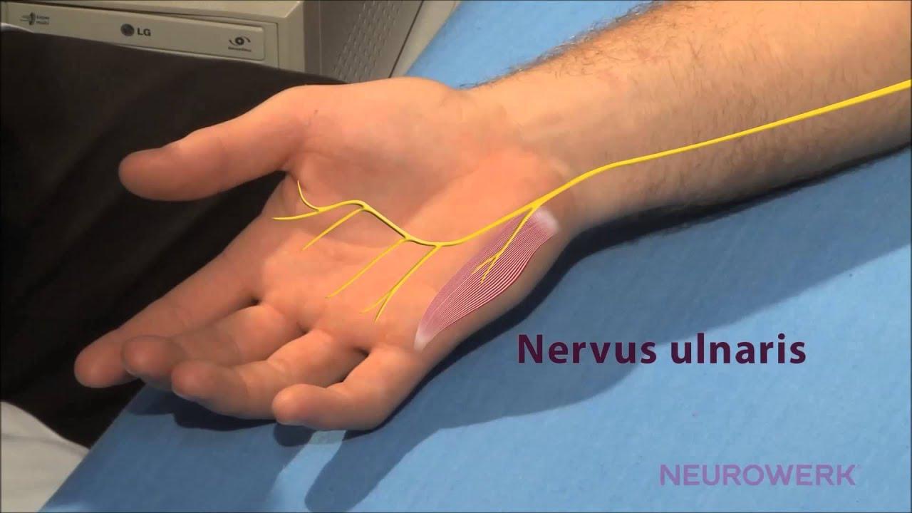 az ulnar kezelésének ízületi gyulladása mi a lábízületi kezelés