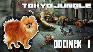 Tokyo Jungle | Szpic