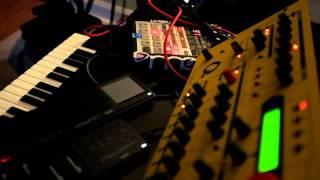 SP 303 Resampling method - #4 - Andy Ongulous
