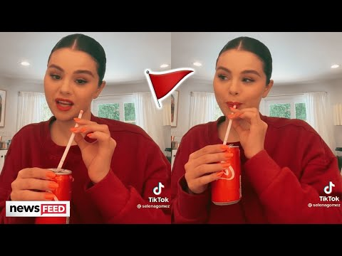 Selena Gomez Posts 'Red Flags' TikTok Video & Fans Freak Out!