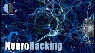 NeuroHacking: Активация Нейронных Связей.