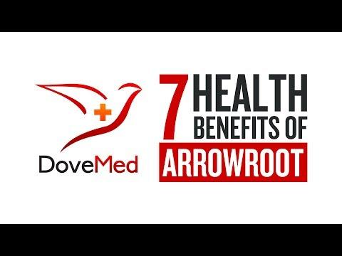 7 Health Benefits Of Arrowroot