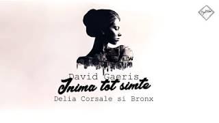David GAERIS - Inima tot simte ( feat. Delia Corsale&ampBRONX )