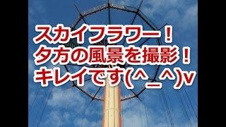 東京ドームシティ アトラクションズ(旧後楽園遊園地)の「スカイフラワ...