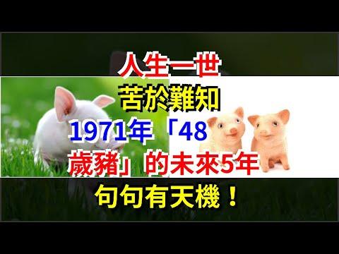 """人生一世,苦於難知,1971年""""48歲豬""""的未來5年,句句有天機!,[星座運勢大全]"""