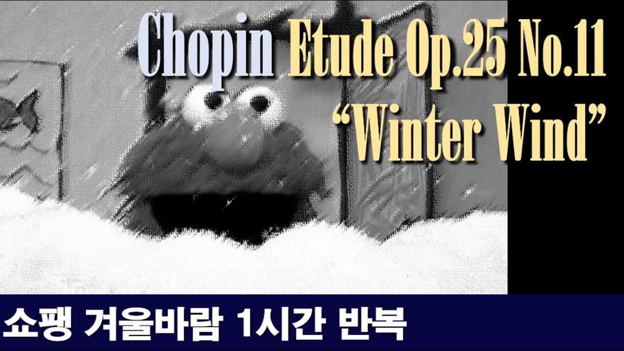 """[클래식 노동요] 쇼팽 에튀드 Op.25-11 """"겨울바람"""" 1시간 반복^^ Chopin - Etude Op.25-11 """"Winter Wind"""" 1-hour repeat^^"""