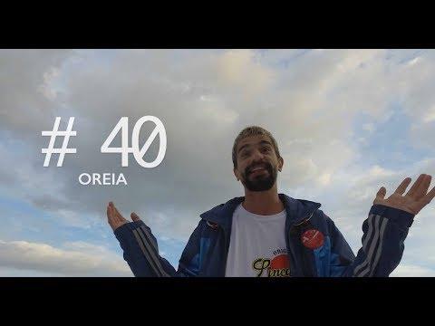 Perfil #40 -