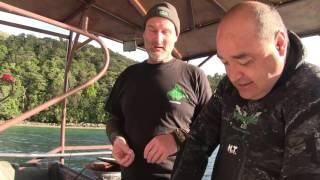 Wettie TV- Diving Fiordland & The Humble Kina