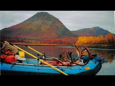 Alaska Hunting : Moose Caribou Dall Sheep