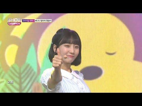 Show Champion EP.266 OH MY GIRL BANHANA - Banana allergy monkey
