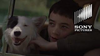 Boundaries (2018) Official Trailer HD