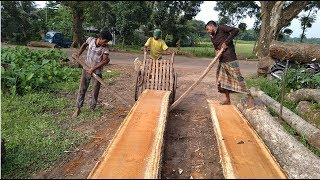 Wet Wood by New Saw Machine Cutting by Super Fast Way in Village New Saw Mill। Skilled Wood Workers