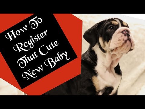 How To Register Your New Puppy