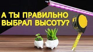 как выбрать высоту подвеса для фитолампы ? Какие линзы и в каких случаях нужно использовать ?