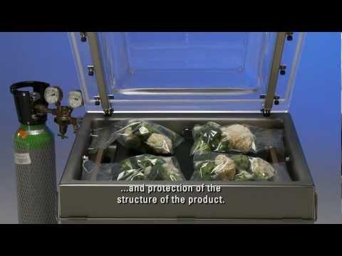 Henkelman Vacuum Packaging Machine Marlin 52