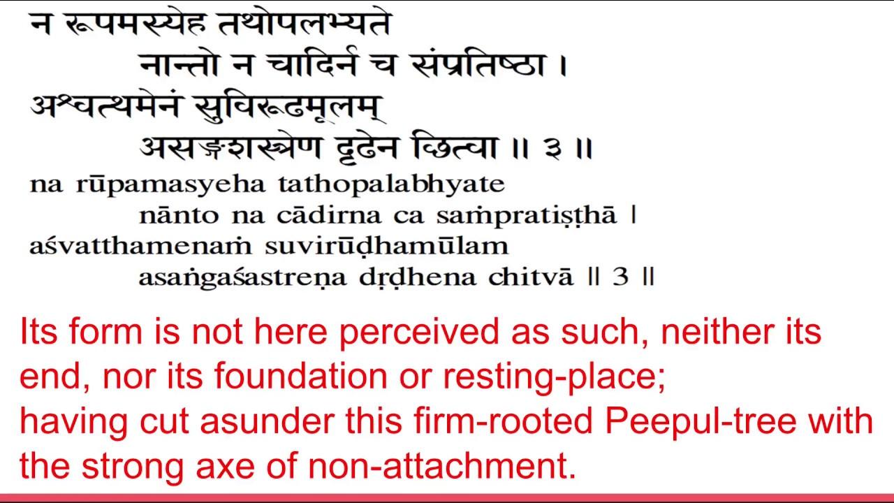 Bhagavad Gita Chapter 15 chanting (Slokas with English Translation)