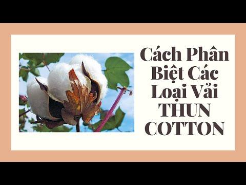 Cách Phân Biệt Các Loại Vải THUN COTTON May Mặc