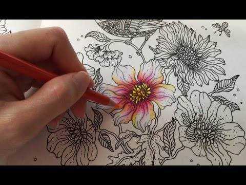 Spring Flower 1/5 : Daydreams Coloring Book | Coloring With Colored Pencils