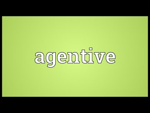 Agentive Meaning