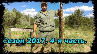 4 месяца в тайге. ч. 4. Рыбалка, Щука 7 кг. Коптим рыбу, Много окуня.