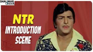 NTR Introduction Scene || Aggi Ravva Movie || Shalimar Cinema
