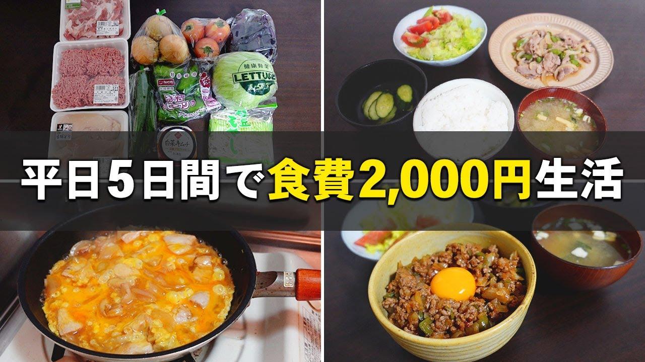 Download 【食費節約術】一人暮らし社会人の平日5日間の自炊と買い物記録