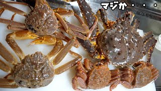 "Too cheap ""translated crab"" bought on the Internet was too translated"