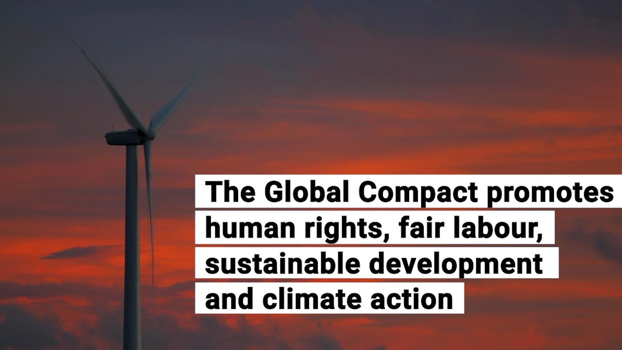 UN Habitat III Conference - United Nations Sustainable Development