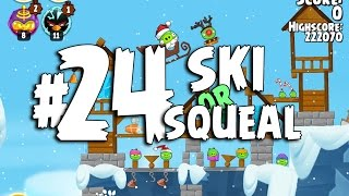 Angry Birds Seasons Ski or Squeal 1-24 Walkthrough 3 Star