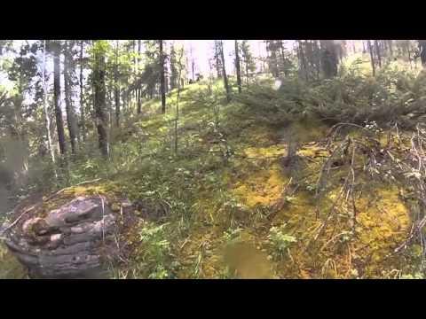Видео заснял парочку в лесу велосипедистов фото 199-752