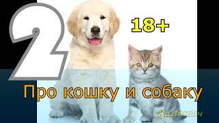 18+ Про кошку и собаку 2 из 4