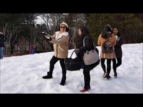 Seoul South Korea Trip | November 28 - December 3 ,2017