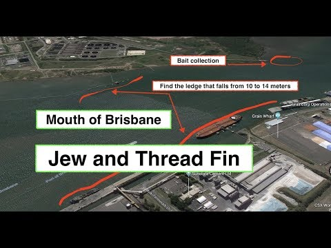 Jew And Thread Fin, Brisbane River, SPOT Selection And MAPS.