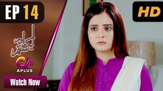 Aik Aur Sitam - Episode 14 | Aplus Dramas | Maria Wasti, Alyy Khan, Beenish Chohan | Pakistani Drama