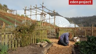 10 tips for gardeners in March from the Eden Project