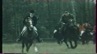 """Koń jaki jest ... """"Pogoń za lisem"""""""
