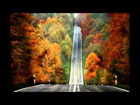 Xspective Sense & Beat Service   Feel Our Heaven Xtigma Mix