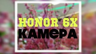 Honor 6X тестирую двойную камеру - примеры фото и видео. Honor 6X Camera samples