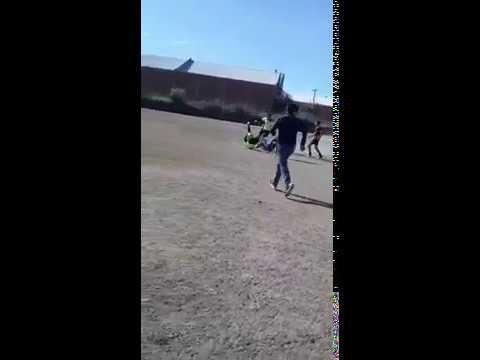 Fútbol infantil: un técnico golpeó al árbitro