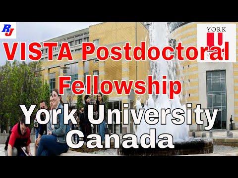 VISTA Postdoctoral Fellowship in York University, Canada