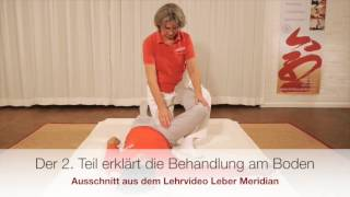 Video Shiatsu-Meridian-Lehrvideos -  Trailer download MP3, 3GP, MP4, WEBM, AVI, FLV Juli 2018