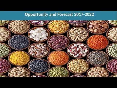 Global Pulses Market Share, Size, Prize Trends 2017-2022