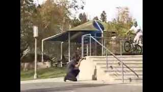 Copia de The Deadline crew bmx