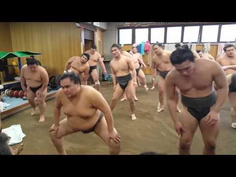 Sumo Training at Hakkaku Stable