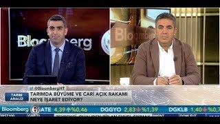 Türkiyenin Tarım Ekonomisi - Tarim Analİz - İrfan Donat