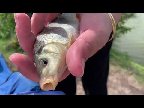 First Time Fishing At Tyler's Common Fishery - (Full Documentary)