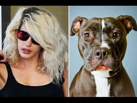 Woman having sex with pitbull