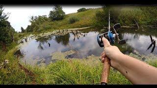 Видеоотчет о ловле щуки в траве  на джеркбейты с берега