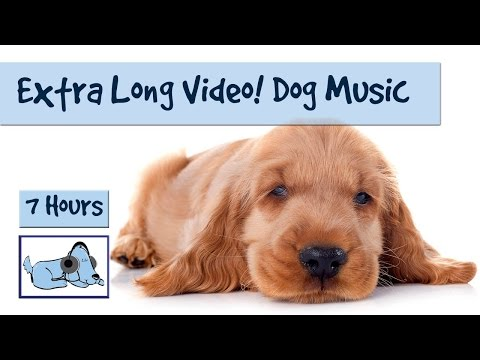 EXTRA LONG VIDEO!!! Relaxation Music for Dogs and Puppies - 7 Hour Playlist!!!